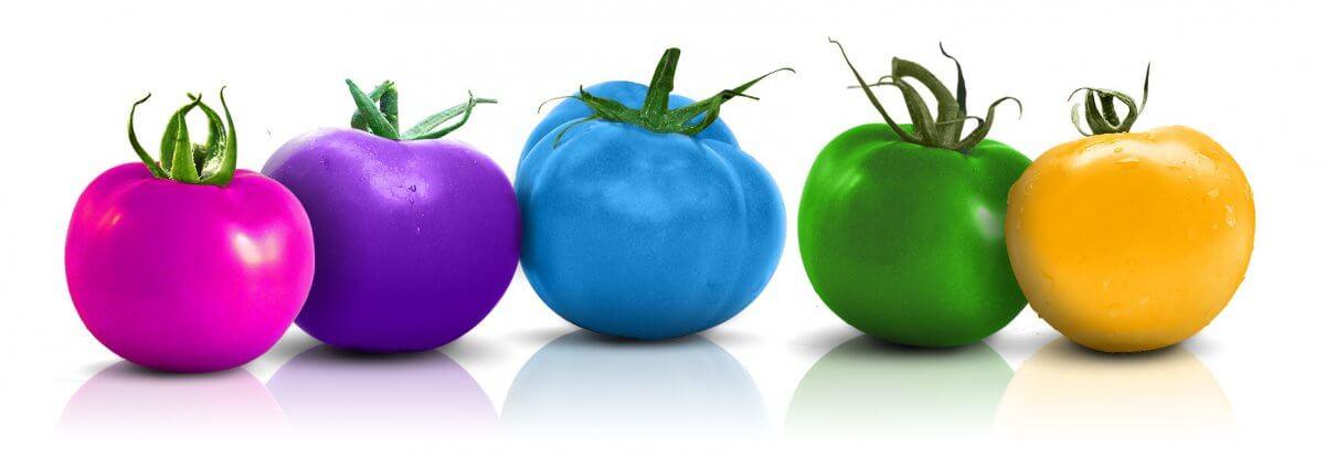 Alle Leistungen einer Werbeagentur: Mio Creativ Logo in Tomatenform